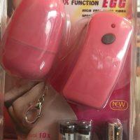 wireless egg.jpg1